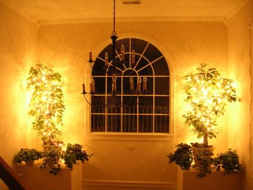 LED Christmas Lights   LED Lights At Home